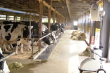 畜産・農業